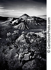 Bromo Mountain with two brave photo