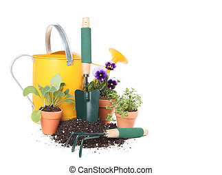 Planting New Flowers and Herbs in the Garden - Planting New...