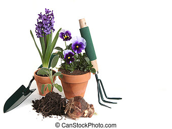Garden Supplies of Pansies, Hyacinth, Sage and Planting...