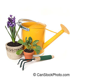 Fresh Potted Springtime Plants With Yellow Watering Can