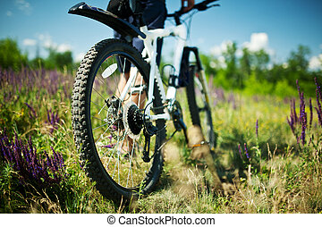 Modern bicycle in meadow with shallow dept of field