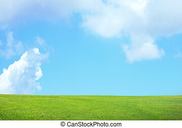 green grass with sky and cloud - green grass with blue sky...