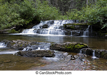 Mountain stream - Mountain stream, Waterton Lakes National...