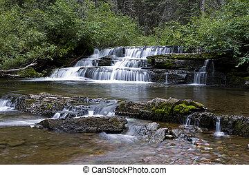 Mountain stream. - Mountain stream, Waterton Lakes National...