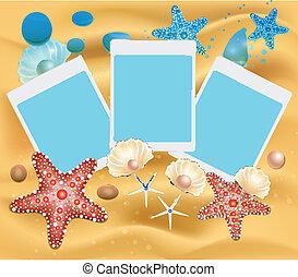 Beach Photos vector
