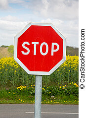 STOP traffic sign - Stop traffic sign with grenola plants in...