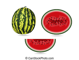 Water melon with seeds on white background - vector...