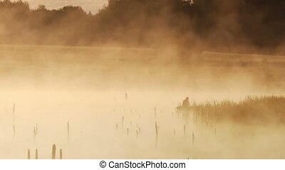 Morning fishing at the dawn