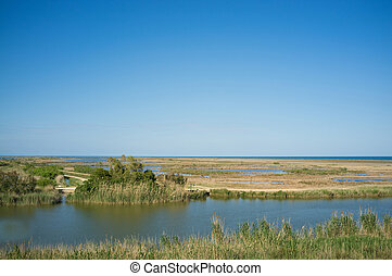 Ebro delta landscape with its wetlands reaching to the sea