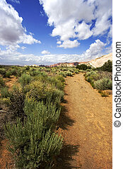 Path to the Redrock Mountains in Snow Canyon - Utah - Snow...