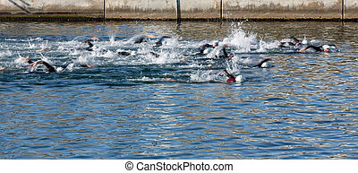 Swimming blurred motion - Leader swimmers in Triathlon, slow...