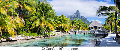 Bora Bora panorama - Panorama of a beautiful coast with...