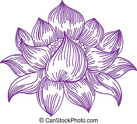 lotus in hand-drawn style - vector illustration