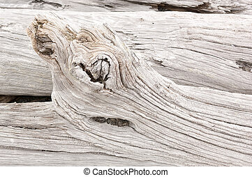 Driftwood - Detail of weathered driftwood found on the...