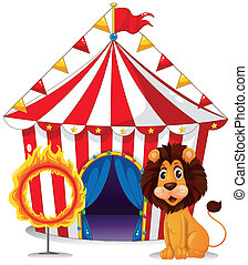 A lion and a fire ring in front of the circus tent -...