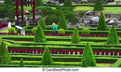 street cleaner in Nong Nooch garden - street cleaner in Nong...