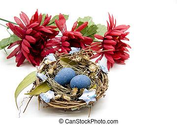Bird nest   - Bird nest with eggs