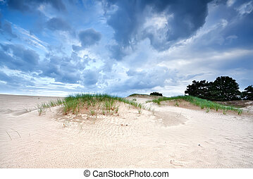 dramatic cloudscape over sand dunes, Appelscha