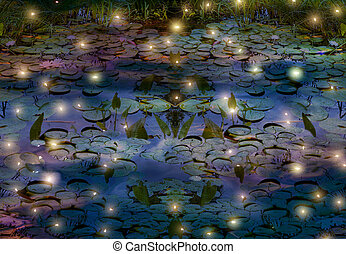 fireflies and water lily pond at night - fireflies and water...