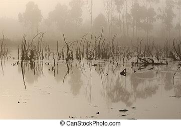 pântanos