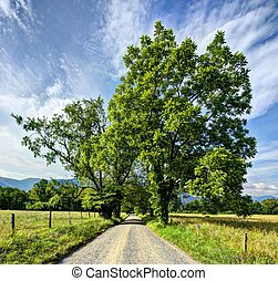 Cades Cove - Sparks Lane in Cades Cove near Gatlinburg,...