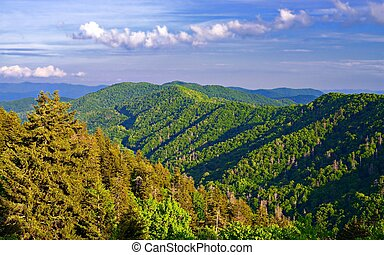 Newfound Gap in the Smoky Mountains near Gatlinburg,...