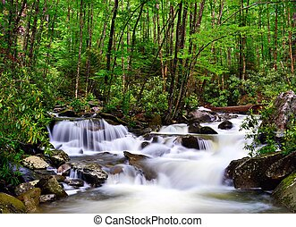 River in the Smoky Mountains - cascades in the Smoky...