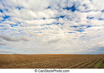Rolling Clouds over an Iowa Farm Field in Spring