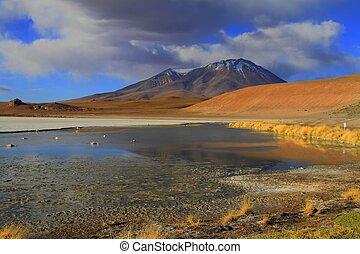 Eduardo Alveroa, Uyuni Bolivia