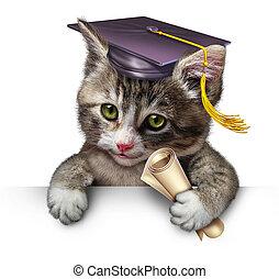 Pet School - Pet school concept with a cute happy kitten...