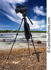 professional video camera in a coral reef at low tide