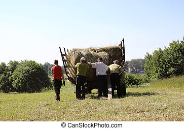 Haymaking - Farmers loading of the tractor trailer of hay...