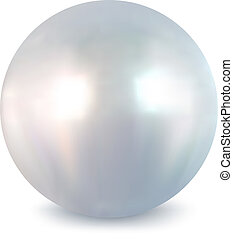 White pearl Vector - Pearl on a white background Vector...