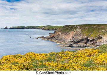 Wales coastal scene to Skomer Is - Wales coastal scene...