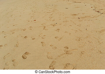 Foot print - Many foot print on the beach background texture