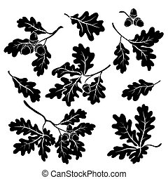 Oak branches with acorns, silhouettes - Set oak branches...
