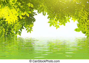 Abstract natural backgrounds for your design