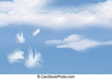 Feathers Floating Into Cloudy Sky - White feathers floating...