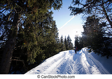 Cross Country Skiing - Cross Country skiing in the mountains