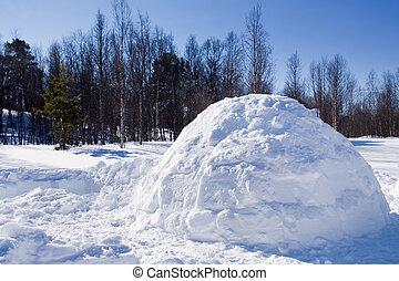Igloo in Winter