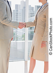Business team shaking hands by large windows