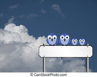 Blank street name sign - Family of birds sat on a blank...