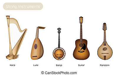 Five Musical Instrument Strings on White Background -...