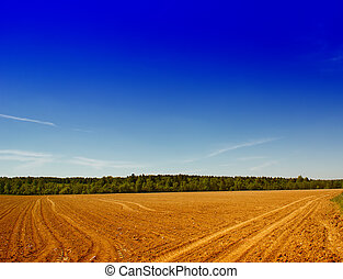 Tillage - Farming field near forest at spring