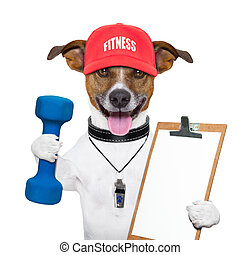 fitness dog - personal trainer dog with blue dumbbells and...