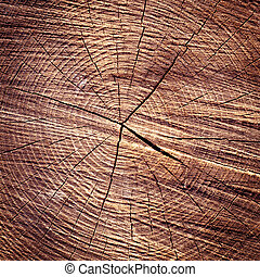 wood rings texture background cracked wooden cut