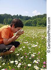 pólen, alergia, meio, enquanto, criança, flores, espirro