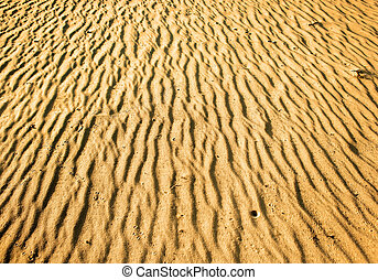 Texture of desert - Yellow sand in desert Texture of desert