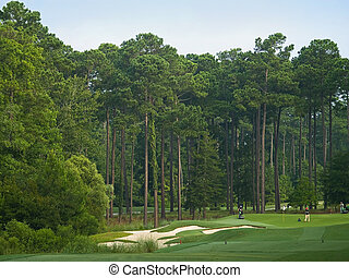 Course Preparation - Golfers and maintenance personal on a...
