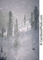 Crystalized snowflakes falling while being backlit by the...
